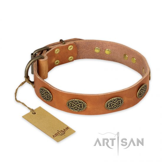 """Magic Amulet"" FDT Artisan Tan Leather Pitbull Collar with Oval Studs"