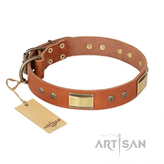 """Enchanting Spectacle"" FDT Artisan Tan Leather Pitbull Collar with Old Bronze Look Plates and Round Studs"