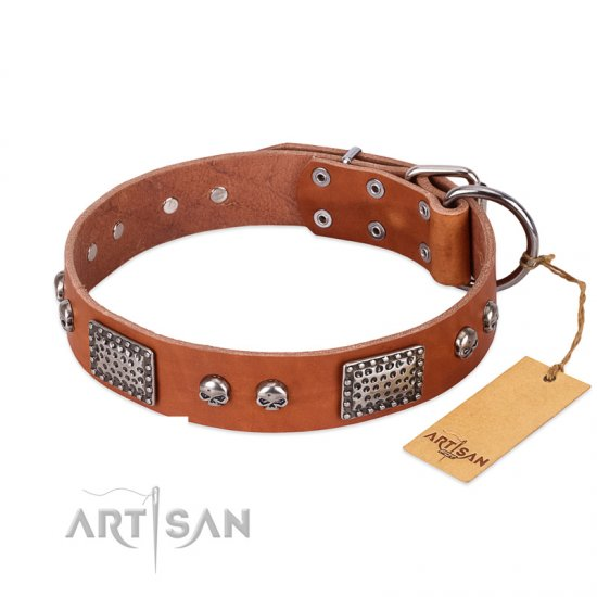 """Sparkling Skull"" FDT Artisan Tan Leather Pitbull Collar with Old Silver Look Plates and Skulls"