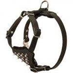 Spiked Leather Dog Harness for Pitbull Puppy Control