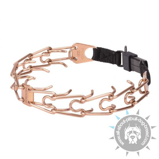 'Under Control' HS Curogan Pinch Collar with Click Lock Buckle - 1/6 inch (4.0 mm) prong diameter