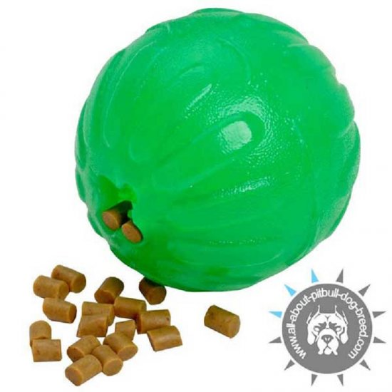 """Fish-me-out"" Chewing Treat Toy - Middle Size"