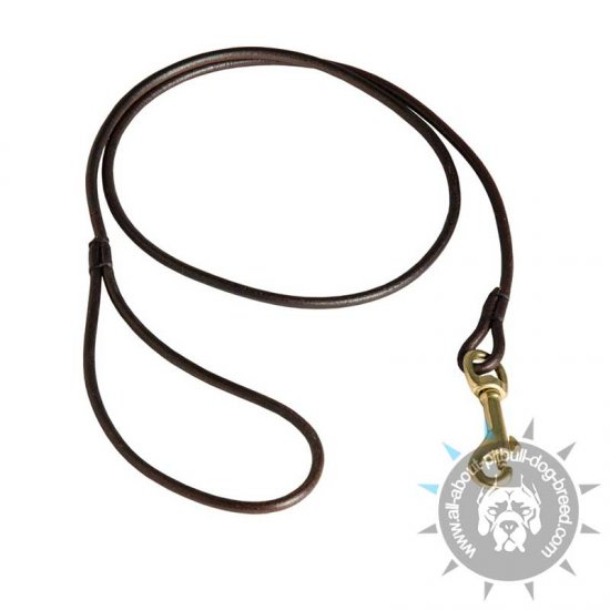 Thin Round Leather Leash for Pitbull