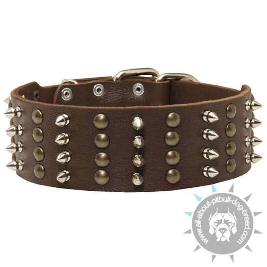 Wide Spiked and Studded Leather Collar for Pitbull