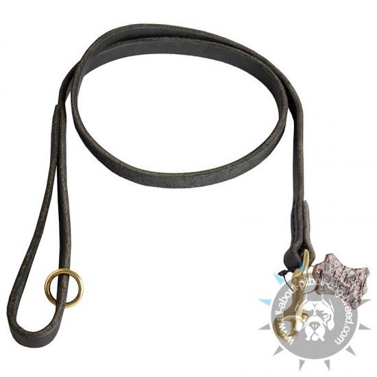 Leather Pitbull Leash for Walking and Tracking