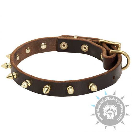 Spiked Leather Dog Collar-Luxurious Dog Collar with Handmade BRASS Spikes