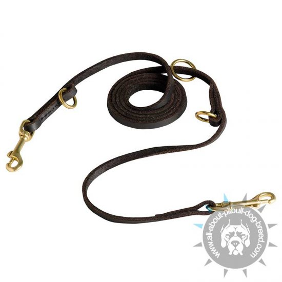 3/8 inch Leather Dog Leash - Multifunctional Leather Leash for Pitbull