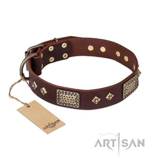 """Loving Owner"" FDT Artisan Decorated Leather Pitbull Collar with Plates and Studs"