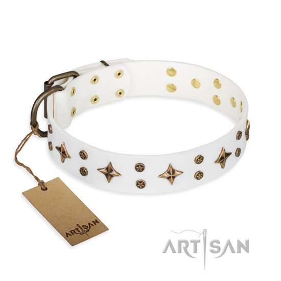 'Bright stars' FDT Artisan White Leather Pitbull Dog Collar with Old Bronze Look Decorations - 1 1/2 inch (40 mm) wide