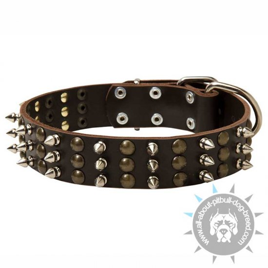 Fancy Spiked and Studded Leather Collar
