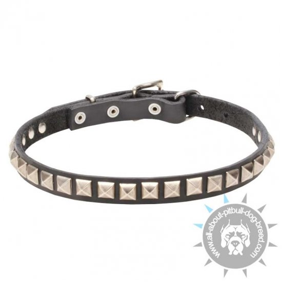 'King Studs' Leather Pitbull Collar with Pyramid-like Studs