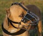 Wire Basket Dog Muzzle for American Pit Bull Terrier