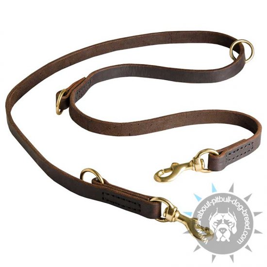 Multi Functional Leather Dog Leash for Pitbull