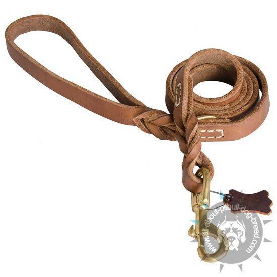 Classic 6ft Leather Pitbull Leash with Braided Handle
