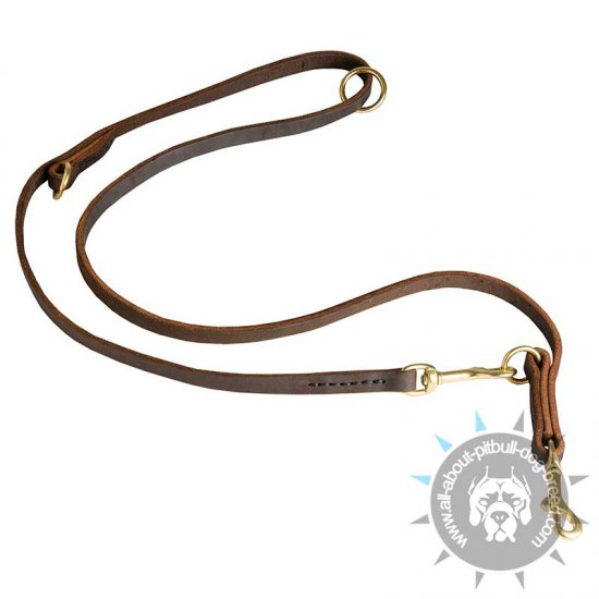 Multifunctional Leather Pitbull Leash -1/2 inch Wide