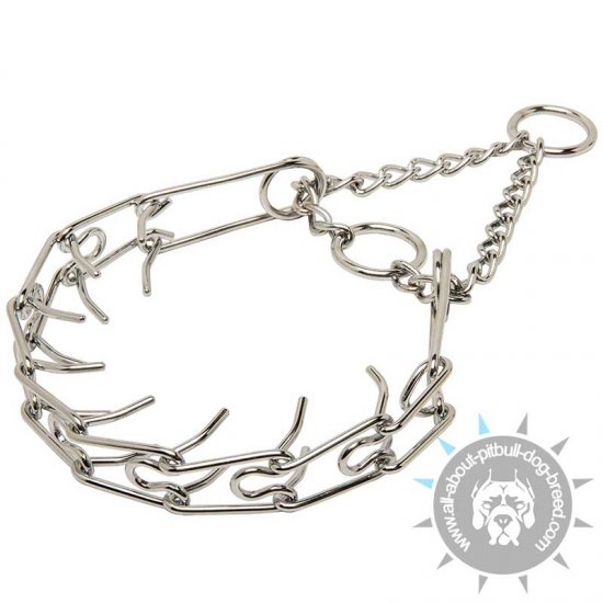 "Chrome Plated Pitbull Collar ""Toothy tamer""- 50045 - 1/6 inch (3.99mm)"