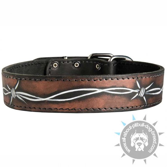 Hand Painted by Our Artists Leather Dog Collar - Barbed Wire