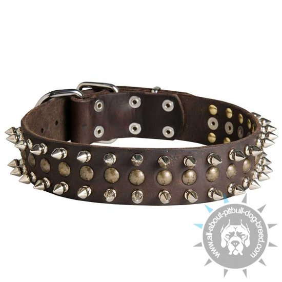 Spiked and Studded Leather Collar for Pitbull Walking