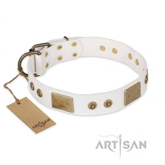 """Unforgettable Impress"" FDT Artisan Decorated Leather Pitbull Collar with Decorations"