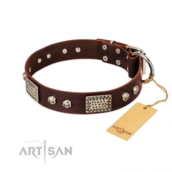 """Pirate Skull"" FDT Artisan Brown Leather Pitbull Collar with Old Silver Look Plates and Skulls"