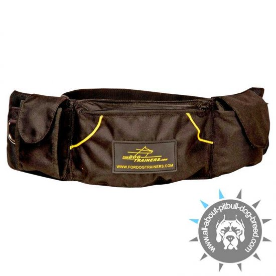 'Swift Reward' Nylon Dog Pouch for Treats and Toys