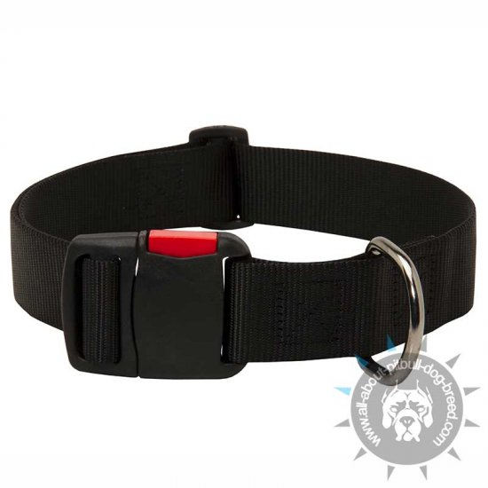 Time-proof Nylon Dog Collar with Quick Release Buckle