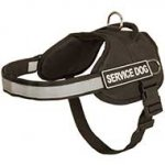 Police/Sherif Dog Harness for American Pitbull Terrier-SAR