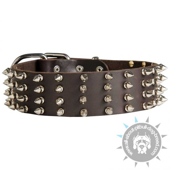 2 inch Wide Leather Spiked Dog Collar for Pitbull
