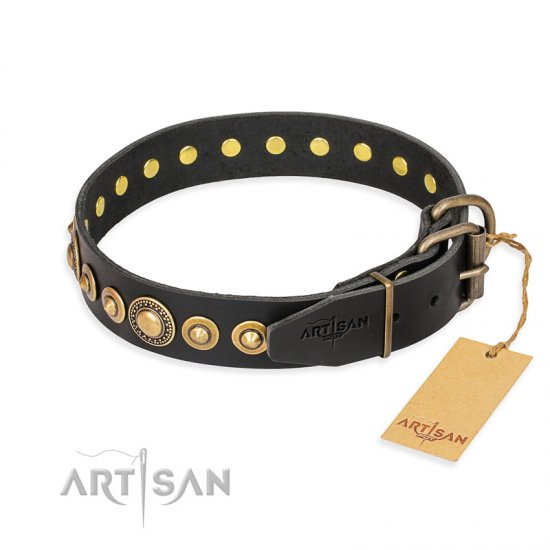 """Gold Mine"" FDT Artisan Black Leather Pitbull Collar with Amazing Bronze-Plated Round Studs"