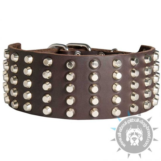 Wide Studded Leather Dog Collar for Pitbull (3 inch)