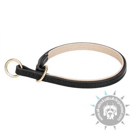 Quality Control Leather Choke Collar for Pitbull Walking and Training