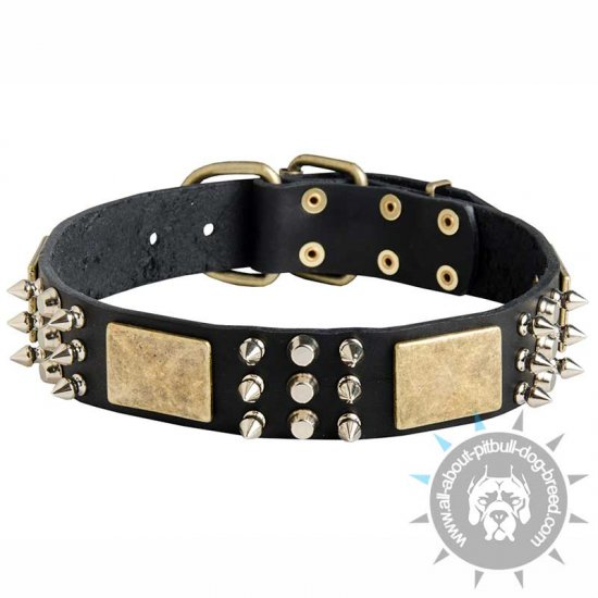 Eye-catchy Design Leather Pitbull Collar