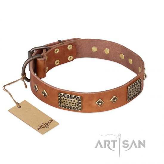 """Catchy Look"" FDT Artisan Decorated Tan Leather Pitbull Collar"