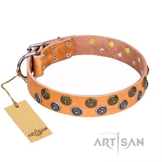 """Precious Sparkle"" FDT Artisan Adorned Leather Pitbull Collar - 1 1/2 inch (40 mm) wide"