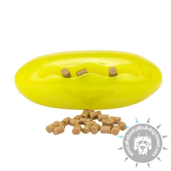 'Melon shaped' Floating Rubber Toy for Treat Dispensing