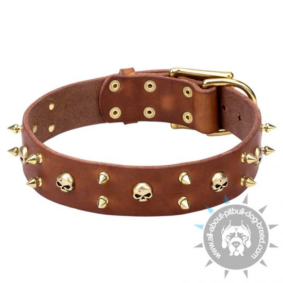 'Hard Rock' Wide Leather Collar with Brass Spikes and Skulls