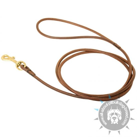 Dog Show Round Leather Leash