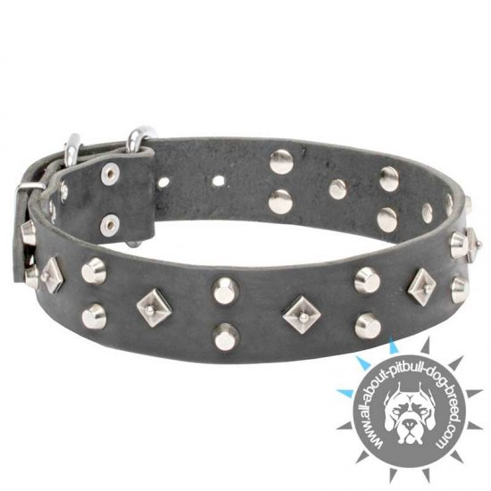 'Pyramid of Cheops' Decorated Leather Collar for Pitbull Walking