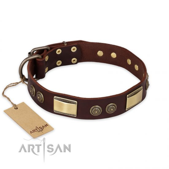 """Golden Stones"" FDT Artisan Brown Leather Pitbull Collar with Old Bronze Look Plates and Circles"