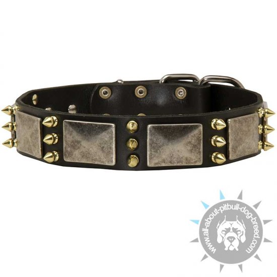 Gorgeous War Dog Leather Dog Collar with Massive Plates + Brass 3 Spikes
