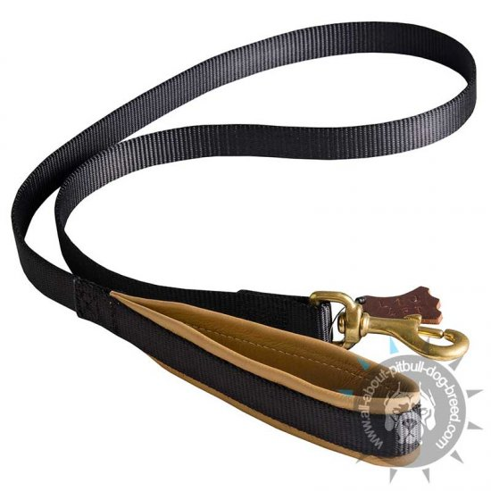 Comfortable Walking Pitbull Leash with Nappa Padded Handle