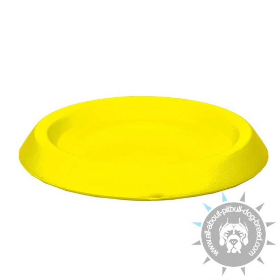 Interactive Flying DuraFoam Disk - Small 9 Inch (22 cm)