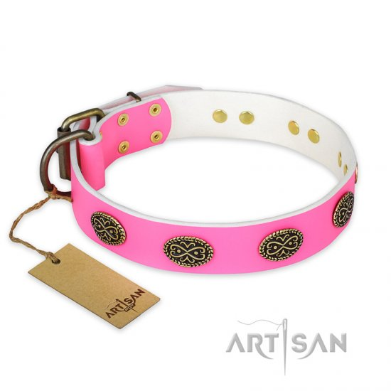 """Forever Fashion"" FDT Artisan Leather Pitbull Collar with Old Look Plates - 1 1/2 inch (40 mm) wide"