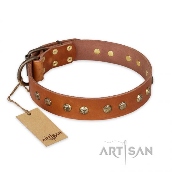 """Spring Flavor"" FDT Artisan Adorned Leather Pitbull Collar with Old Bronze-Plated Engraved Studs"