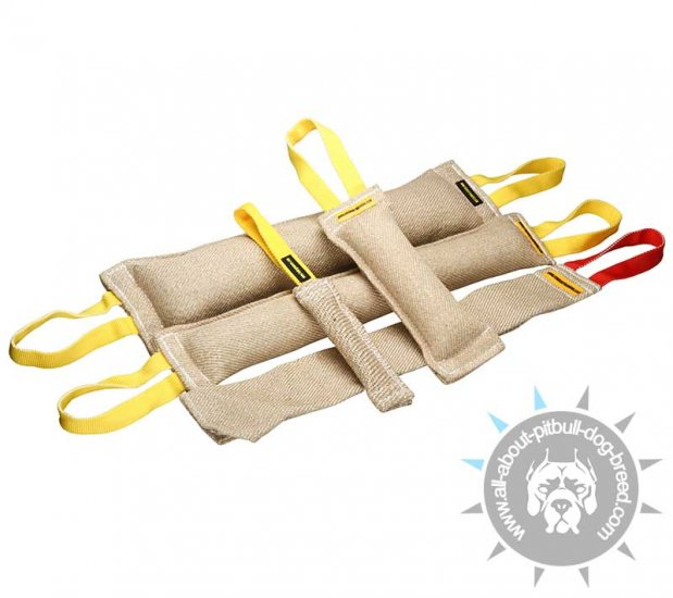 Pitbull Training Set of Jute Bite Tugs (4 items and a free gift)