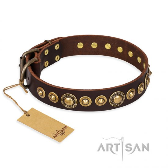 """Ancient Warrior"" FDT Artisan Fancy Leather Pitbull Collar with Old-Bronze Plated Decorations"