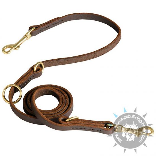 Leather Dog Leash for Training, Walking, Tracking