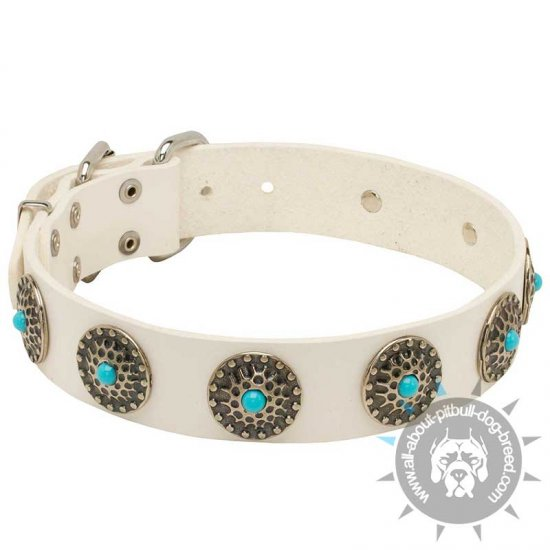 Designer White Leather Dog Collar with Beautiful Conchos and Blue Stones
