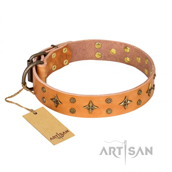 'Top-Flight' FDT Artisan Adorned Tan Leather Pitbull Collar