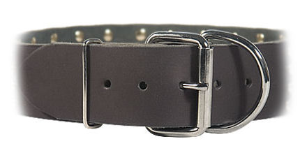2 inch wide All Weather Collar for Pitbull -Leather Collar